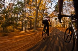 Get on your bike, put your foot to the pedal, and get ready for a series of free autumnal bike rides around Kent.