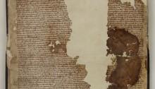 The Sandwich Magna Carta