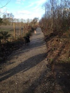 New permissive footpath for Broomfield and Kingswood Parish Council